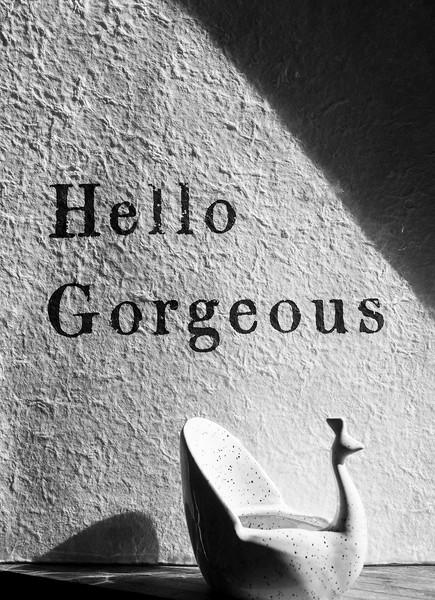 Hello Gorgeous_bw.jpg