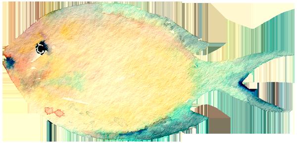 fish16.png