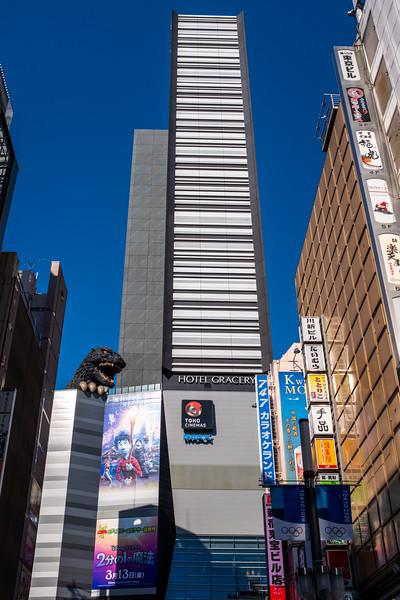 Tokyo -0462.jpg