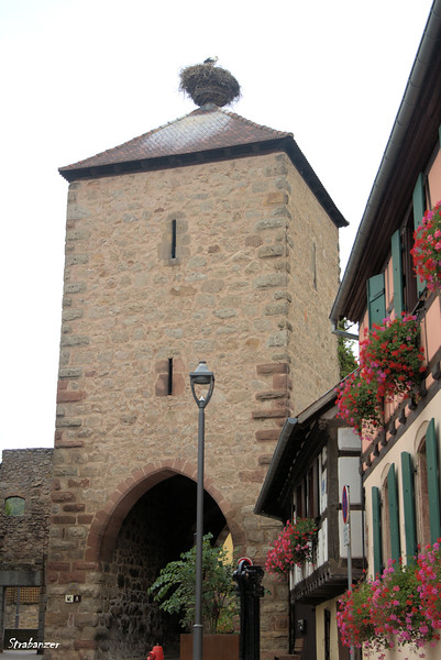 Dambach-la-Ville, Alsace, France, 09/03/2018 This work is licensed under a Creative Commons Attribution- NonCommercial 4.0 International License