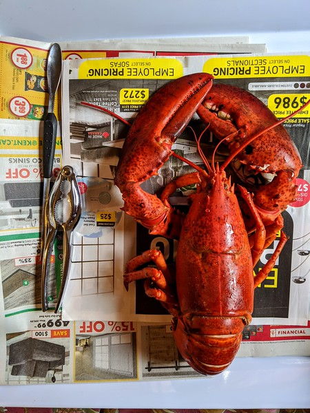 lobster on newspaper.jpg