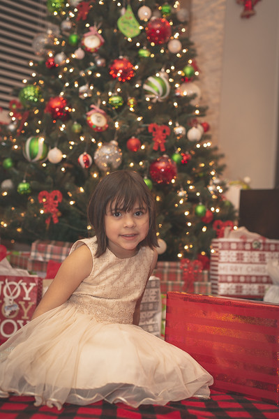 Gonzalez Christmas 2018 (20 of 105).jpg