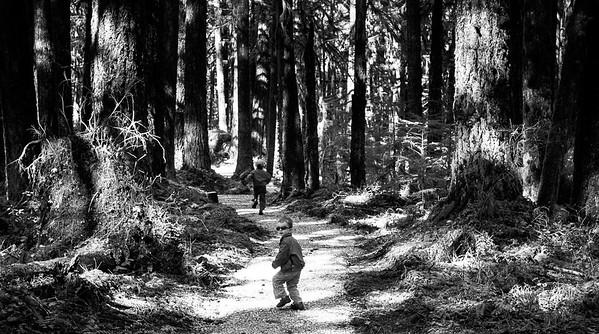Sauk River Hike with Eli and Ezra