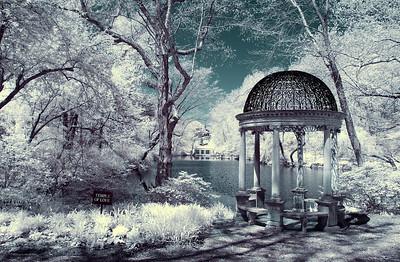 Westbury Gardens IR