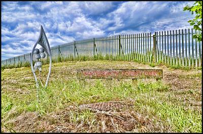021 - Watergate Forest Park, Gateshead , Tyne & Wear, UK - 2014.