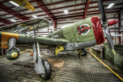 """Norma / Republic P-47D """"Thunderbolt"""""""