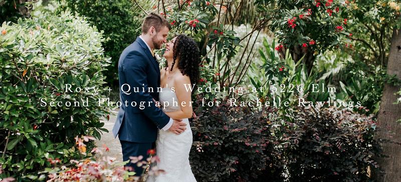 TEP Blog Header - Roxy + Quinn.jpg