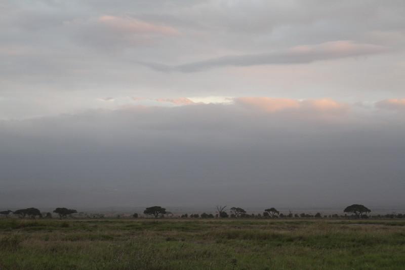 Kenya 2019 #2 1649.JPG
