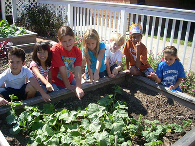 Second Graders Working in the Garden