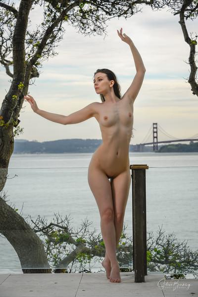 Golden Gate Siren