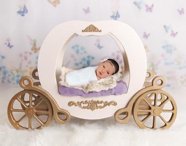 Siena's Newborn Session