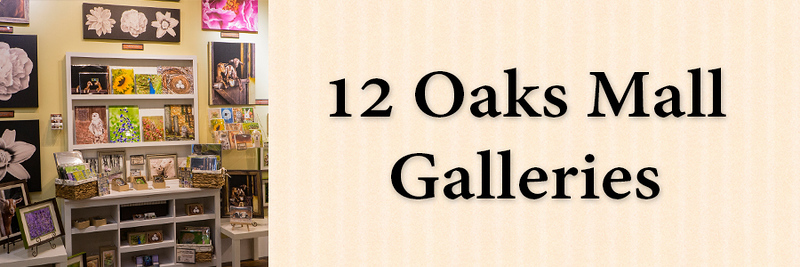 revised 1x3 12 Oaks Mall Tab.jpg