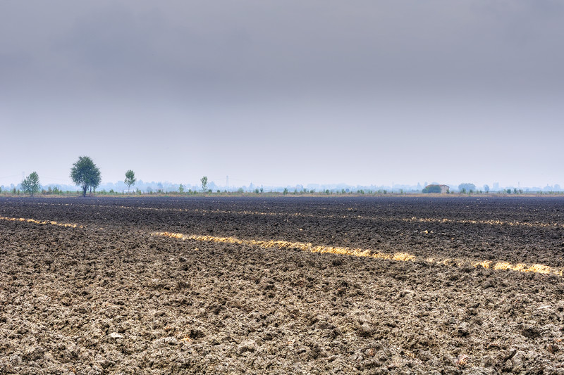 Farmland - Crevalcore, Bologna, Italy - September 3, 2012