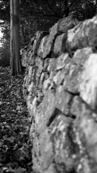 Cemetery_wall_pana.jpg