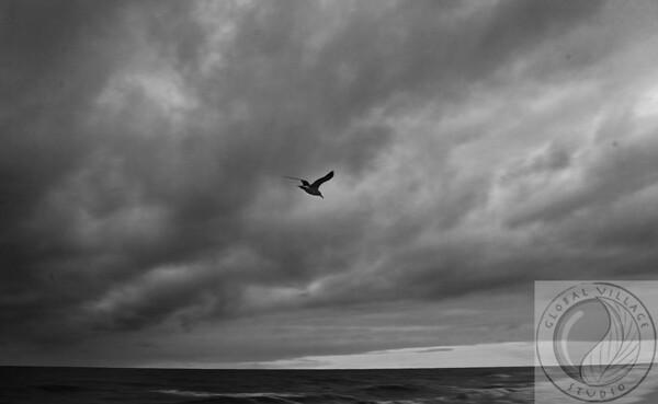 Ocean Isle North Carolina at Dusk  --  Raleigh Durham Cary Photography