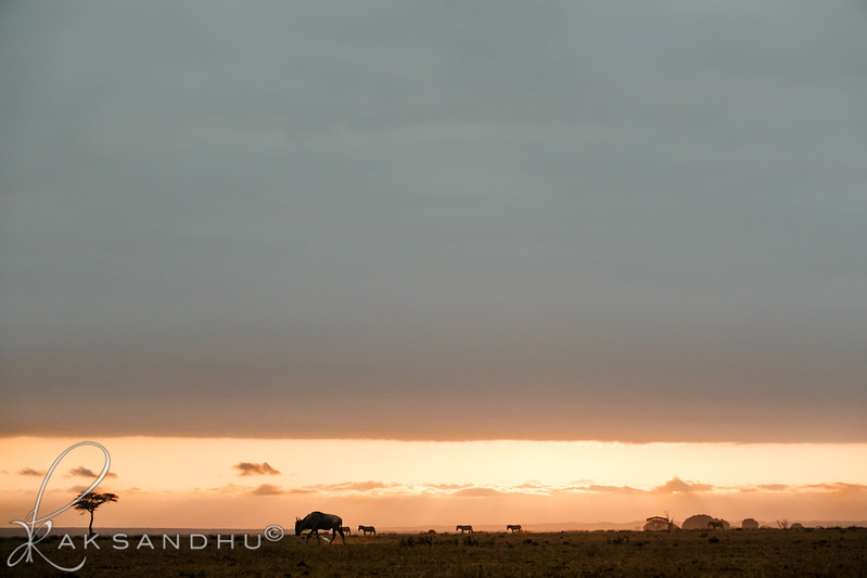 SunInAfrica-011.jpg