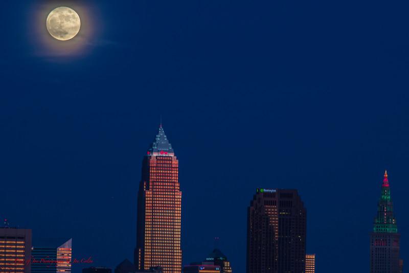 Moon Over Xmas-4.jpg