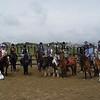 06W27S98 Horses