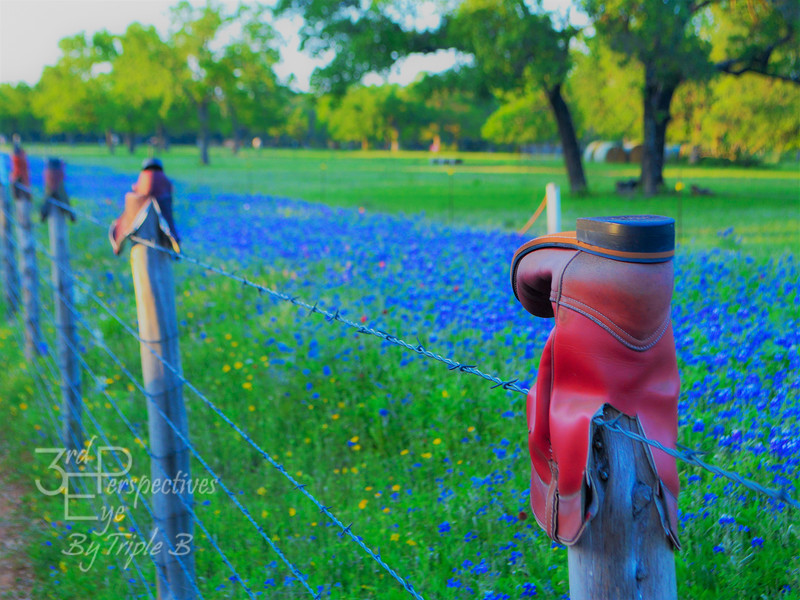 TX Bluebonnett Drive 077-EDIT-filtered.jpg