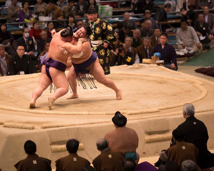 Osaka Sumo 220313 47 .jpg