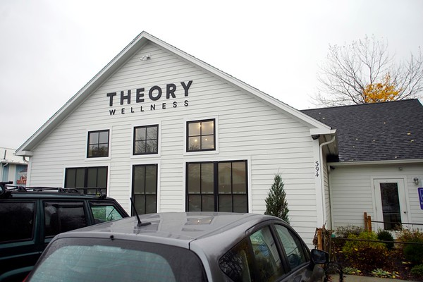 Theory Wellness and tax law - 103119