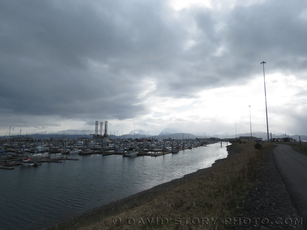 Homer Small Boat Harbor. Homer, AK