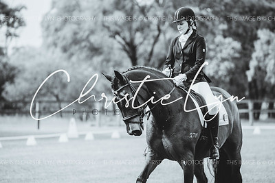 Busselton Dressage: Sharyne Alberts Memorial Competition