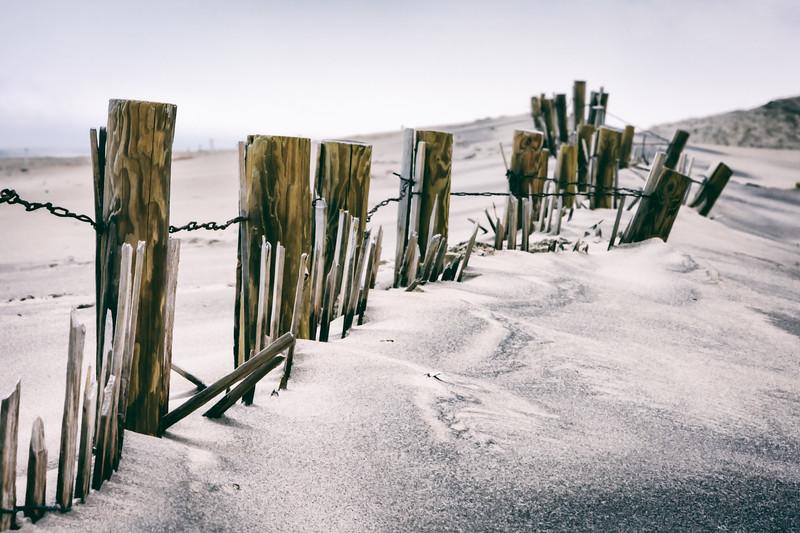 beach-walk-17.jpg