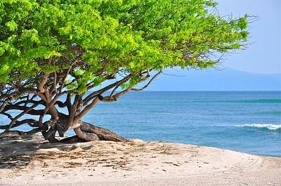 El BANCO BEACH