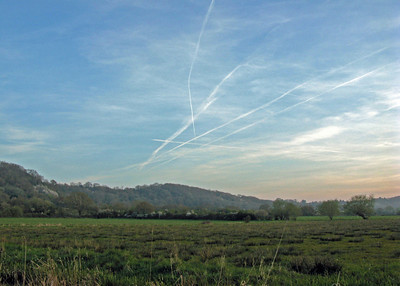 RSPB Reserve West Sedgemoor
