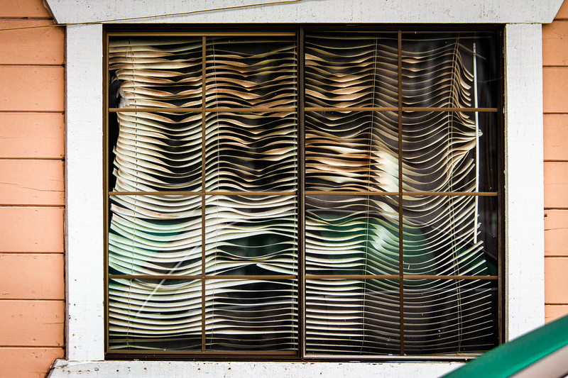 Blinds, Campbell, California, 2010