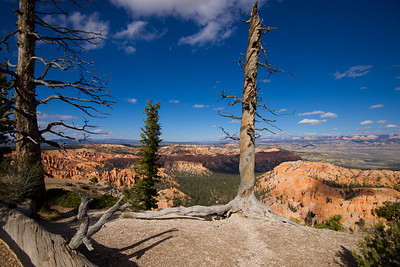 Bryce Canyon - Utah - October 2013
