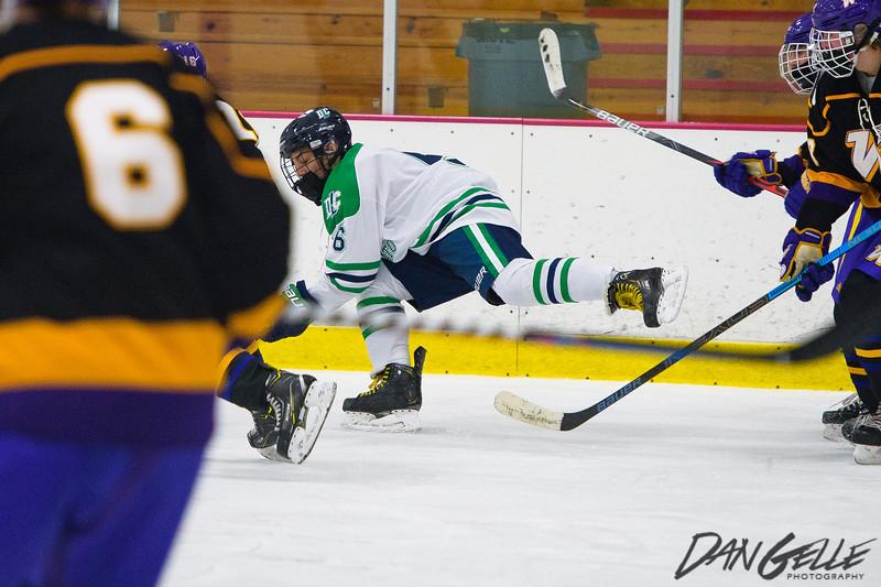 LDC Boys Hockey vs Waconia