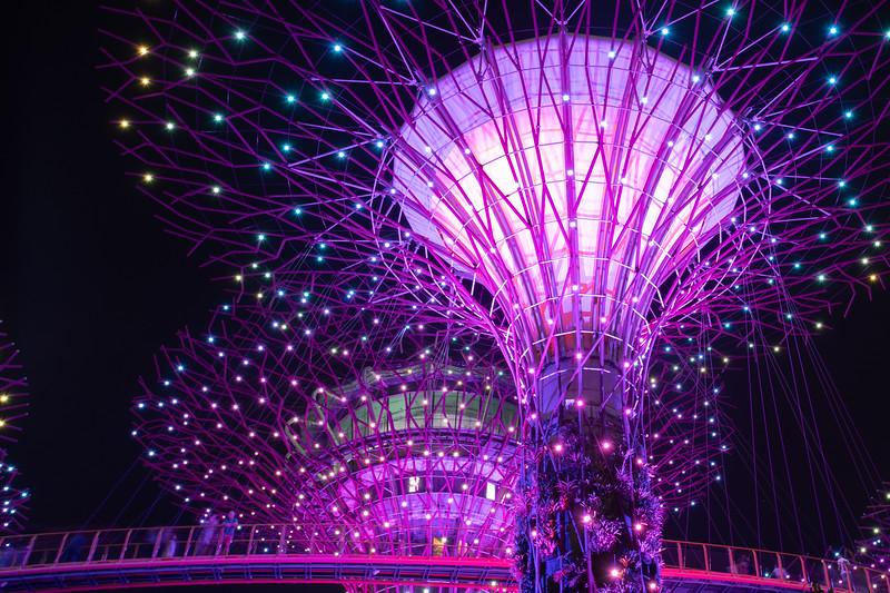 Singapore-19-199.jpg