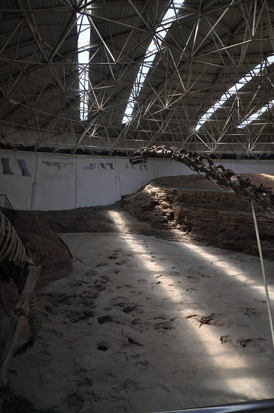 Part 2 of the panorama -- the tracksite is better seen here.  The Huanghetitan mount comes into view here.  Because Lanzhousaurus and Huanghetitan were both found in the same rock unit as the tracks, it is very tempting to say that they made the ornithopod and sauropod tracks, respectively.  But if other dinosaur-bearing formations around the world have shown us anything (not to mention basic rules of ecology), there were almost certainly other iguanodontians and sauropods living at the same time and in the same area, so it's equally possible that as-yet unknown animals made the tracks.  Still, they are good models for the track makers -- hence their inclusion in the museum!