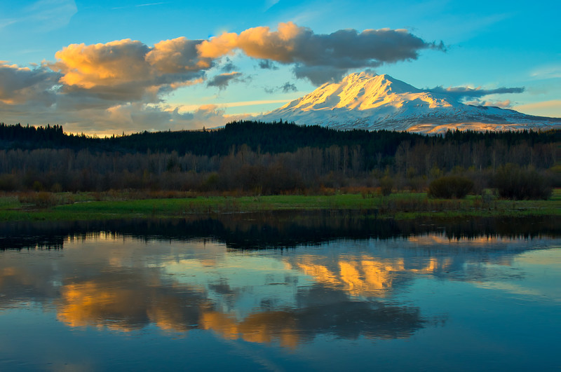 Mt. Adams Reflecting in Trout Lake