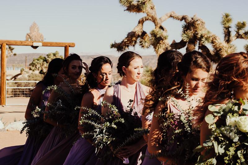 Elise&Michael_Wedding-Jenny_Rolapp_Photography-529.jpg