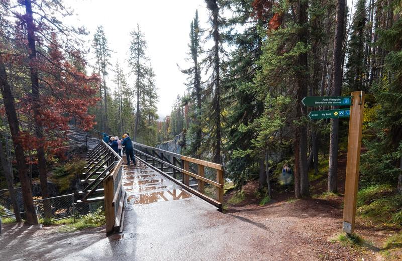 The bridge and viewing point at Sunwapta Falls