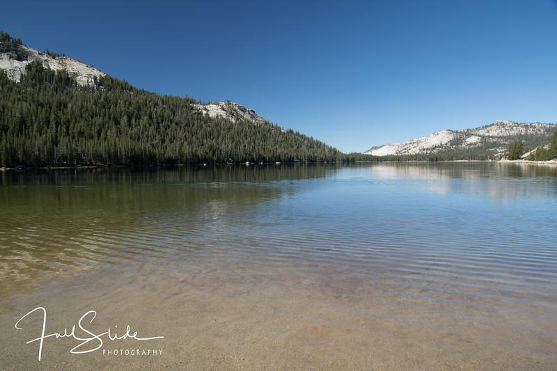 Yosemite 2018 -7.jpg