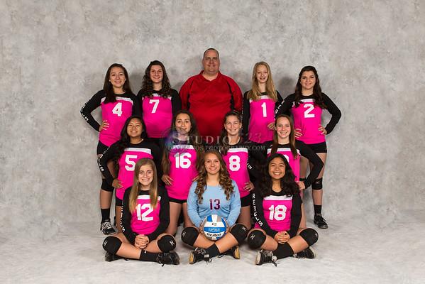 Arizona Rebels Volleyball Club