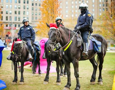 Cleveland Police - Mounted Units