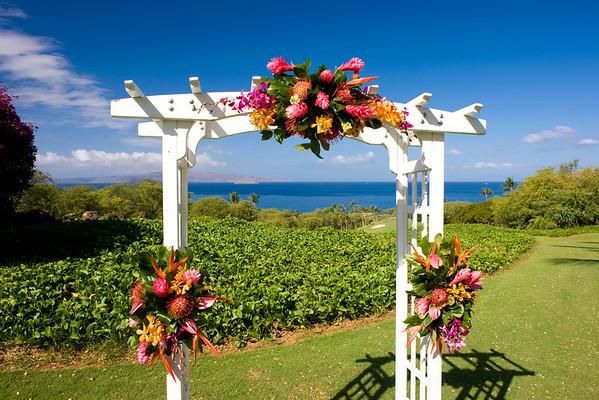 Morrison, Seawatch, Morrison 04.02.09, Hawaii Romance 70