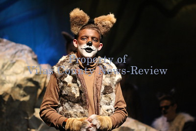 "Northland Pines Middle School Presents ""Jungle Book"""