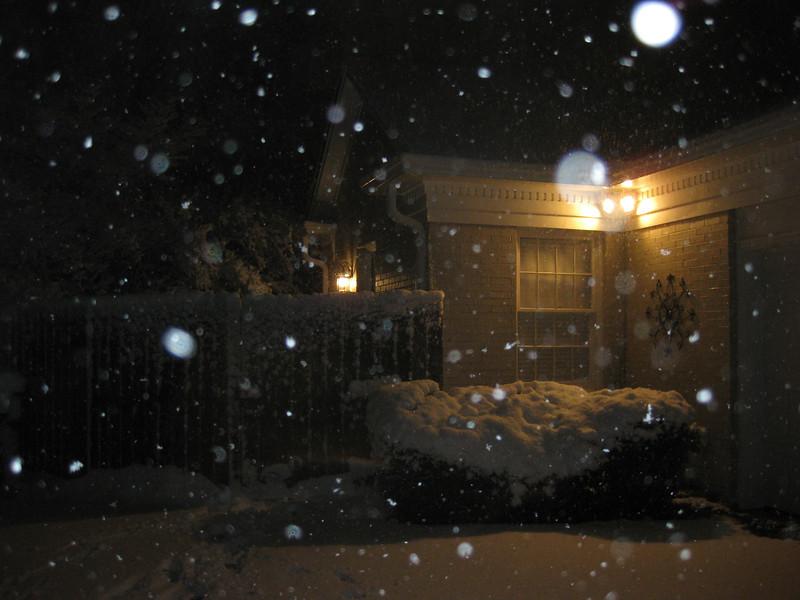 Snow in Jackson_20090228_012.JPG