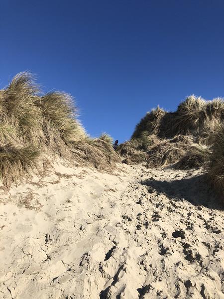Sand dunes near South Jetty. Look who's peeking.