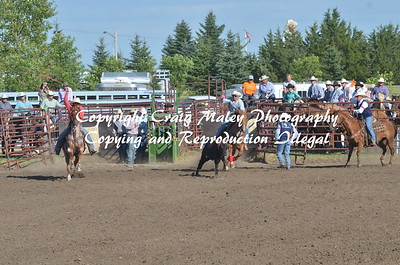 PERF TEAM ROPING 08-15-2015