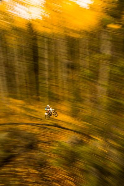 Trayser_Bikes-6.jpg