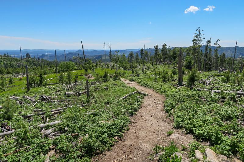 Little Devils Tower/#4B Trail -- 6,760'