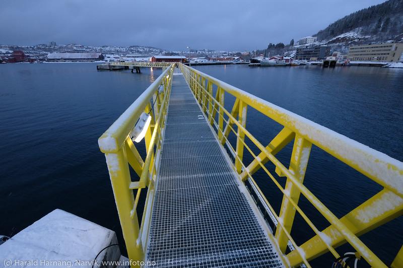Cruisekai - Narvik havn. 24. januar 2020