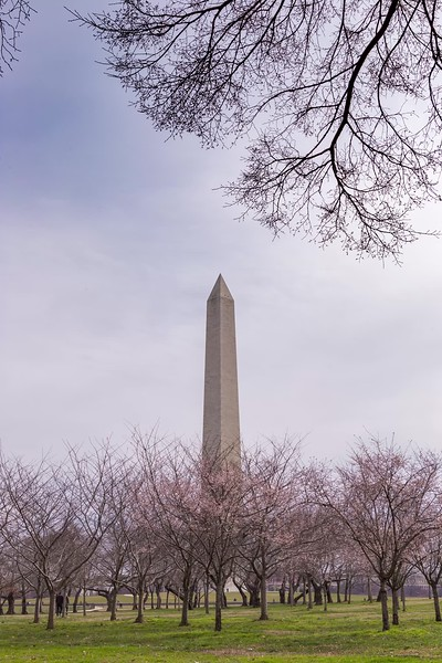 dc washington monument 1-1.mp4